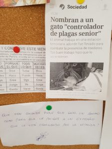 Noticias en cartelera Germinal lado B Blog